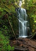 Berry creek falls, velké pánve, ca