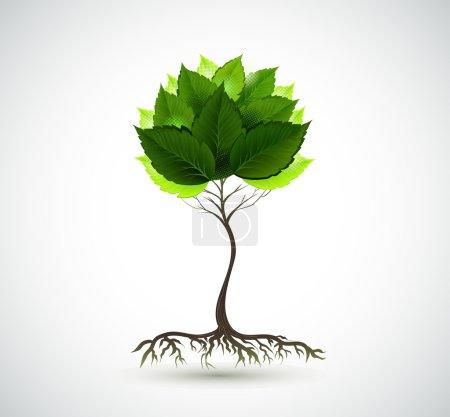 Illustration pour Saison jeune arbre aux feuilles vertes - image libre de droit