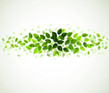 Illustration for Branch with fresh green leaves - Royalty Free Image
