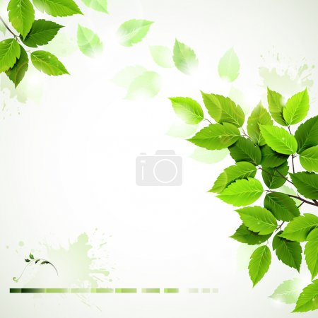 Illustration for Summer branch with fresh green leaves - Royalty Free Image