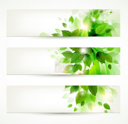Set of three banners with fresh green leaves