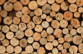 Background of Dry Firewood Logs