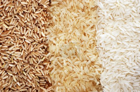 Photo for Food background with three rows of rice varieties : brown rice, mixed wild rice, white (jasmine) rice. - Royalty Free Image