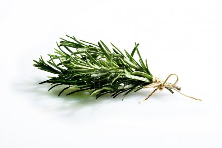Photo for Aromatic herb rosemary, on white background - Royalty Free Image