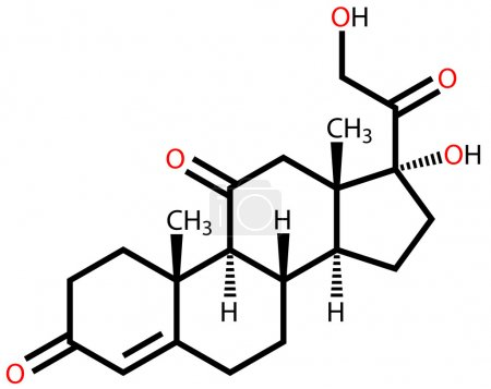 Structural formula of hormone cortisone on a white...