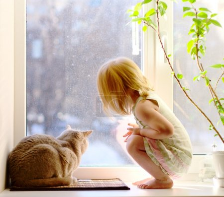 Photo for Cat and girl looking out of the window - Royalty Free Image